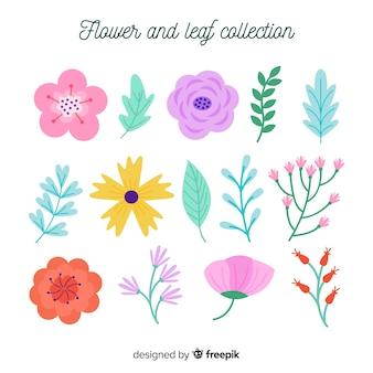 Raccolta di fiori e foglie colorate piatte