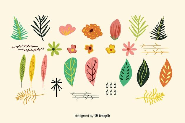 Raccolta di fiori e foglie disegnati a mano