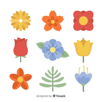 Raccolta di fiori e foglie piatte