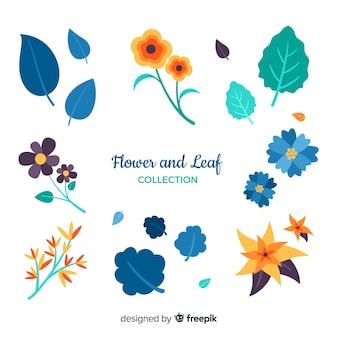 Raccolta di fiori e foglie
