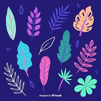 Raccolta di foglie colorate tropicale disegnata a mano