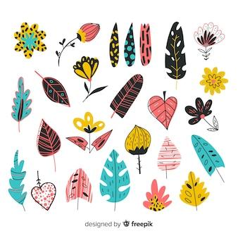 Raccolta di foglie e fiori colorati disegnati a mano