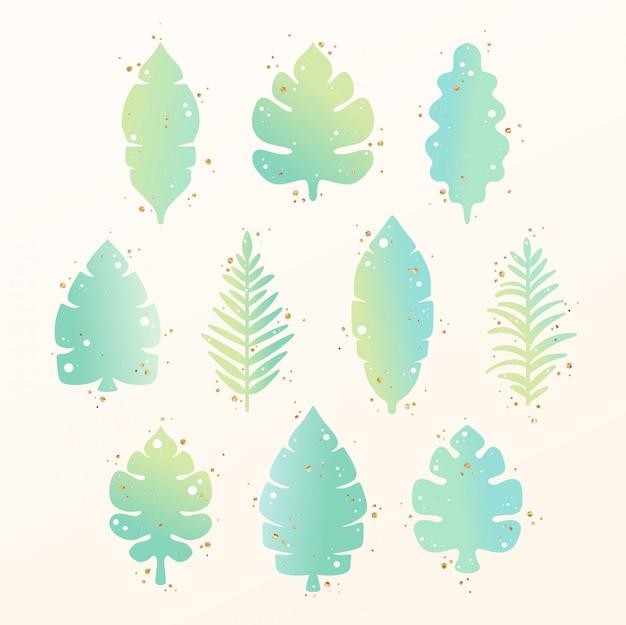Raccolta di foglie tropicali disegnati a mano