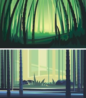 Raccolta di foreste di bambù. paesaggi naturali meravigliosi.