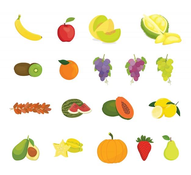 Raccolta di frutta con vari tipi di frutta
