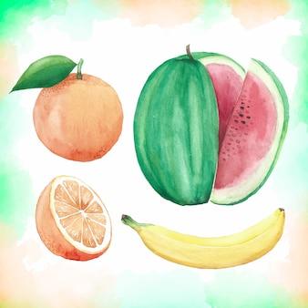 Raccolta di frutta dell'acquerello