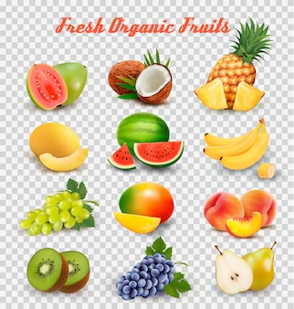 Raccolta di frutta e bacche. anguria, melata, guava, cocco, ananas, uva, mango, pesca, pera, banana, kiwi. impostato.