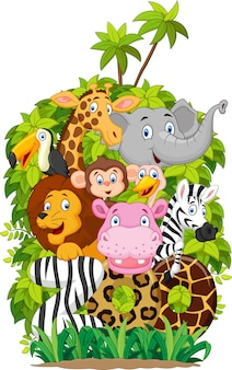 Raccolta di illustrazione di animali dello zoo su sfondo bianco