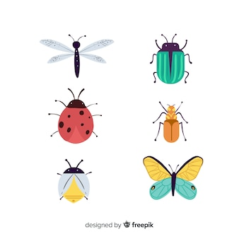 Raccolta di insetti colorati disegnati a mano