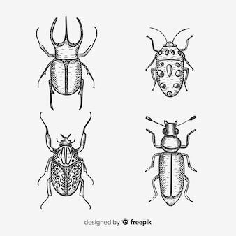 Raccolta di insetti incolori disegnati a mano