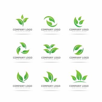 Raccolta di modello di progettazione logo foglia