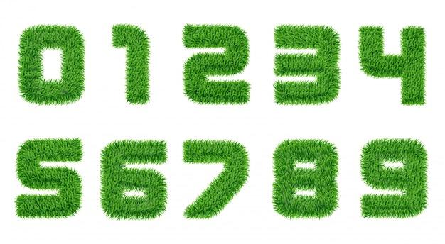 Raccolta di numeri in erba verde