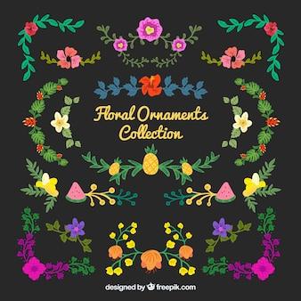 Raccolta di ornamenti floreali colorati