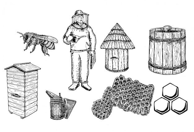 Raccolta di set di miele e apicoltura