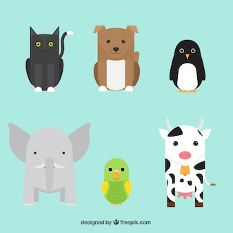 Raccolta di simpatici animali in design piatto