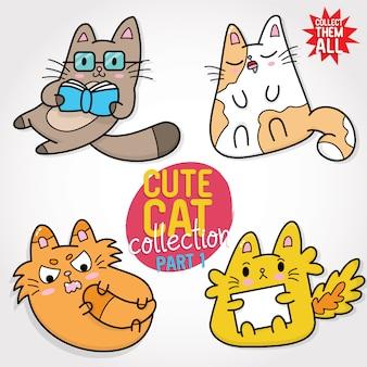 Raccolta di simpatici gatti parte 1
