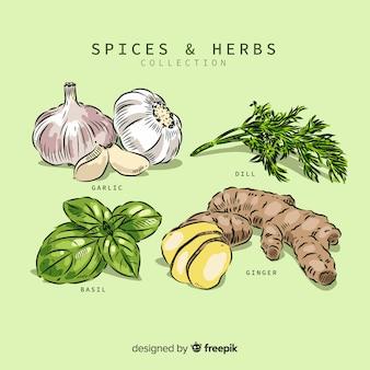 Raccolta di spezie ed erbe aromatiche