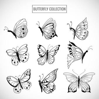 Raccolta di tiraggio della mano di graziose farfalle