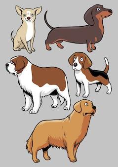 Raccolta di vettore di cani