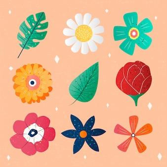Raccolta disegnata a mano dei fiori variopinti della molla del fiore