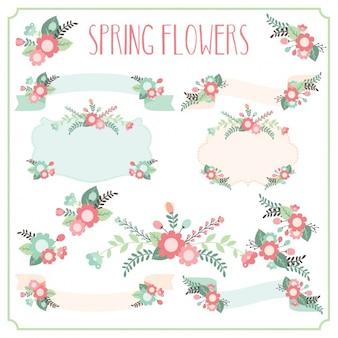 Raccolta fiori decorativi