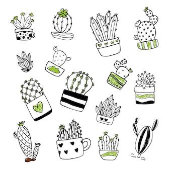 Raccolta illustrazione cactus