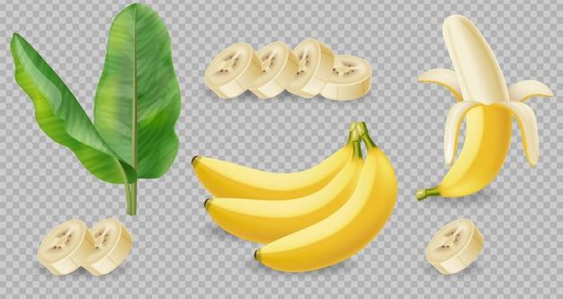 Raccolta isolata di frutti di banana