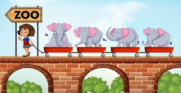 Ragazza che tira carrelli carichi di elefanti allo zoo
