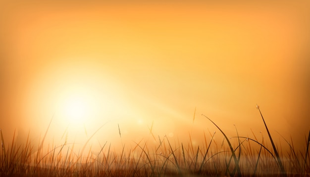 Raggi di alba arancione realistici del sole e bagliore di uno sfondo naturale sopra un campo di erba. disegno di sfondo del cielo al tramonto. illustrazione alla moda.
