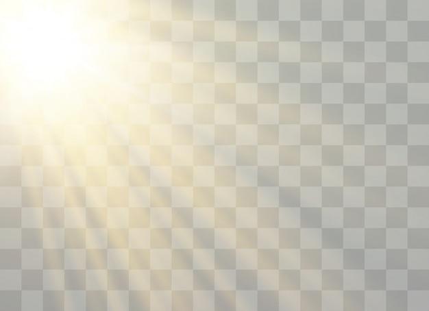Raggio solare, flash, riflesso lente, esplosione, glitter, stella.
