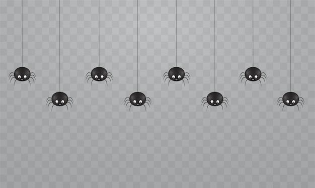 Ragni carini appesi neri su uno sfondo trasparente. spaventosi ragni sulle ragnatele per halloween.