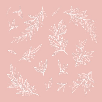 Rami romantici disegnati a mano e foglie contorno
