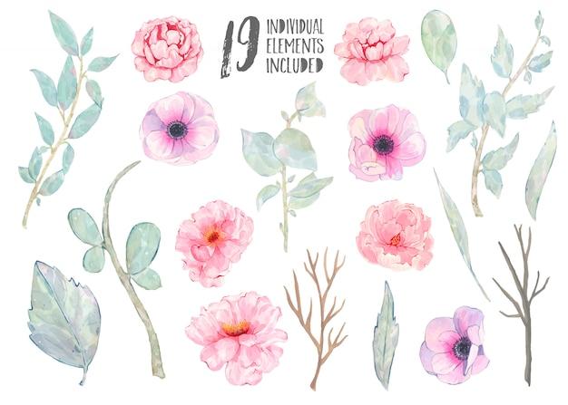Ramo dipinto a mano delle foglie verdi della peonia dell'anemone rosa dell'acquerello isolato su bianco