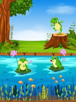 Rana che nuota nel fiume