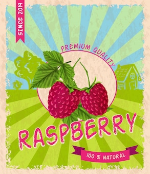 Raspberry poster retrò