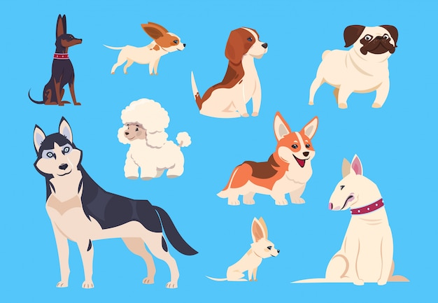 Razze di cani dei cartoni animati. corgi e husky, barboncino e beagle, carlino e chihuahua, bull terrier. personaggi di animali da compagnia comici