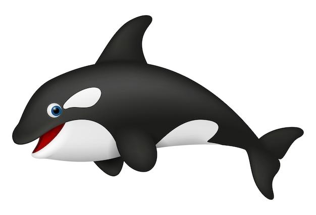 Realistico carino killer whale