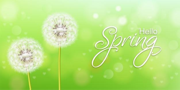Realistico primavera tarassaco fiore