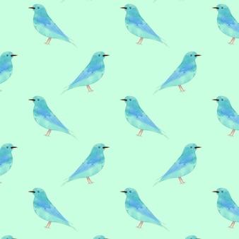 Reticolo senza giunte dell'uccello disegnato acquerello