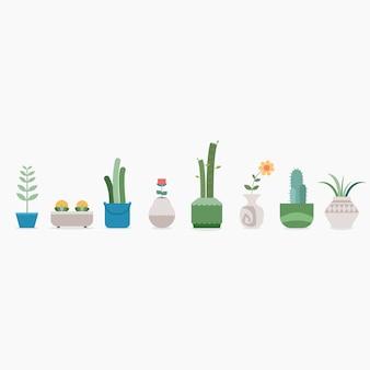Rinfrescanti piante da appartamento