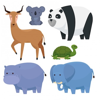 Riservare gli animali selvatici alle crature della fauna