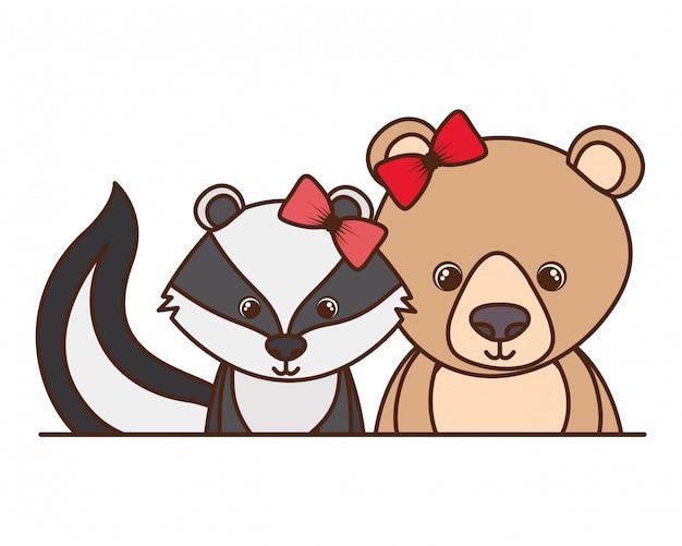 Ritratto carino di orso e puzzola