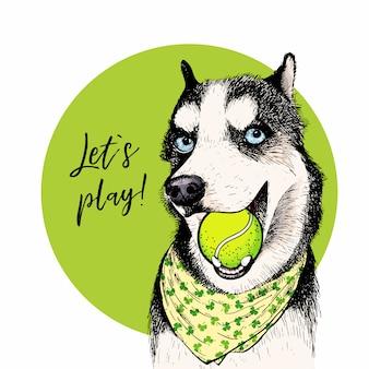 Ritratto di vettore del cane husky siberiano con pallina da tennis.