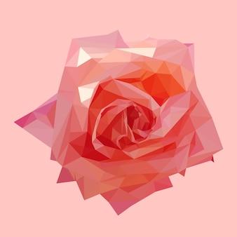Rosa di rosa di corallo poligonale geometrica, illustrazione isolata del fiore di vettore del poligono