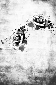 Rosa nera e bianca