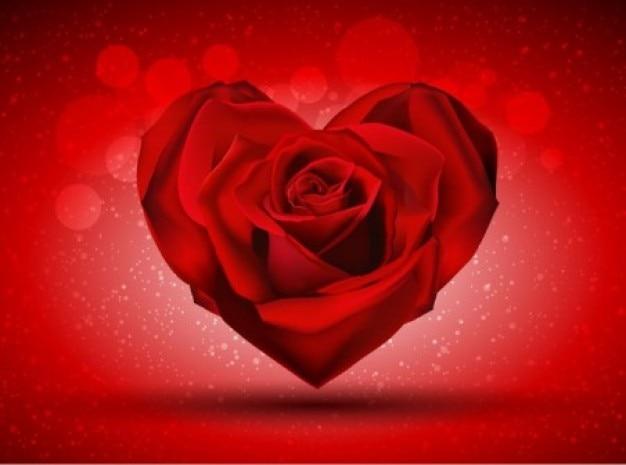 Rosa rossa sfondo di cuore