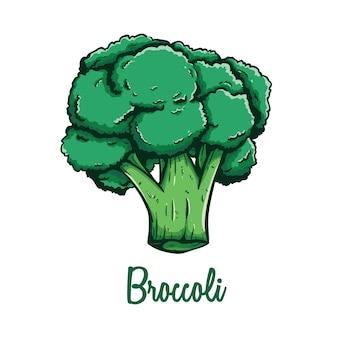 Scarabocchiare verdura fresca dei broccoli con colore e testo su fondo bianco