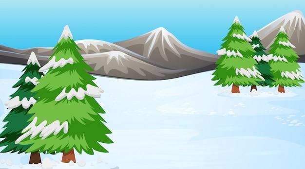 Scena con alberi di pino nella neve