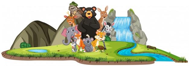 Scena con animali selvatici in piedi vicino alla cascata