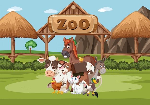 Scena con animali selvatici nello zoo a tempo di giorno